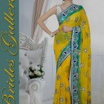 Bridal and Wedding Sarees Collection 2014-15 5