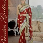 Bridal and Wedding Sarees Collection 2014-15 8