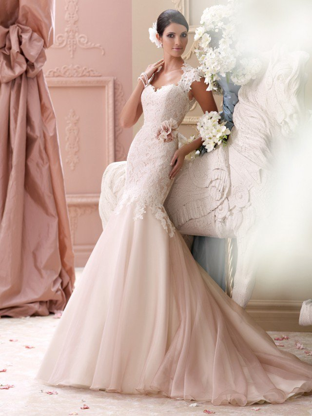 David Tutera Gorgeous Marriage Females Fashion Variety 2015 (1)