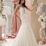 David Tutera Gorgeous Marriage Females Fashion Variety 2015 (6)