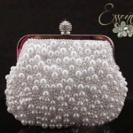 Essentia Stunning Stylish Bags & Handbags 2014-15 (3)