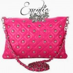 Essentia Stunning Stylish Bags & Handbags 2014-15 (4)