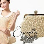 Essentia Stunning Stylish Bags & Handbags 2014-15 (5)