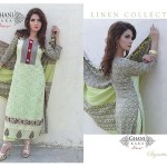 Exclusive Eid Gallery 2014 For Girls By Ghani Textile (6)