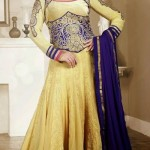 Georgette Anarkali Suits Collection 2014-15