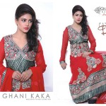 Ghani Kaka weightless Chiffon Collection 2014-15 3