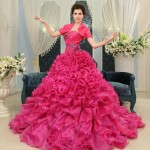 Gorgeous Pink Event Ball Gowns Assortment For Women (4)