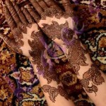 Indian mahndi designs 2014-15 8
