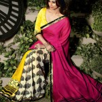 Natasha Couture Beautiful Sarees Collection 2014-15 8