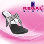 Regal Shoes Next Season Shoes Variety 2014 For Women (4)