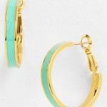 Stylish and Special Fashion Of Hoop Jewelry For Females (1)