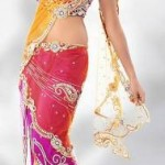 Utsav Fashion  Attractive Saree with Blouse Concepts 2014 For Marriage (1)