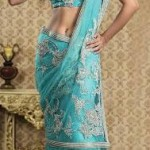 Utsav Fashion  Attractive Saree with Blouse Concepts 2014 For Marriage (5)