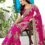 Utsav Fashion  Attractive Saree with Blouse Concepts 2014 For Marriage (6)