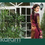 Alkaram Studio Attractive Superb Variety 2014 Vol-2 (10)