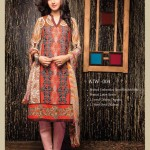 Amna ismail Semi Stitched Winter Collection 2014 6