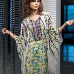Ayesha Ibrahim Ladies Winter Garments 2014 (5)