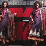 Ayesha Zara Woven Shawl Collection For Ladies (5)