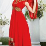 Gorgeous Ankle Height Churidar Kameez Concepts 2014-15 For Females (4)