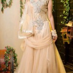 Lovely Designer Party Wear Gown 2014-15 2