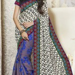 Lovely Evening Wear Saree Collection 2014-15