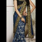 Lovely Evening Wear Saree Collection 2014-15 5