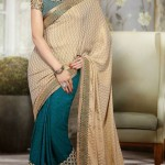 Lovely Evening Wear Saree Collection 2014-15 8