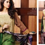MATTE SILK COLLECTION 2014-15 By Rasham Ghar 5