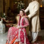 Most Recent Pakistani Beautiful Wedding Clothes UK For Females 2014-15 (6)