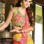 Natasha Couture Clothes & Lehenga Choli's Fashionable Variety 2014-15 (1)