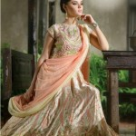 Natasha Couture Clothes & Lehenga Choli's Fashionable Variety 2014-15 (9)