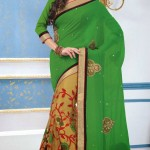 Outstanding Evening Wear Sarees Collection 2014-15 5