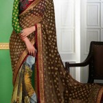 Outstanding Evening Wear Sarees Collection 2014-15 9