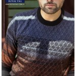 Royal Tag New Fall Outfits 2014-15 For Gents (10)