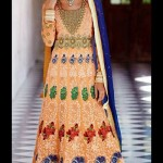 Stunning Floor Length Anarkali Suit Collection 2014-15 6