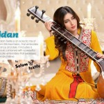 Wijdaan Females Suits 2014-15 By Salam Textile (3)
