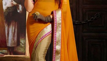 Kaneesha Function Lovely Sarees Collection 2014-15 (2)