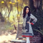 Origins - Ready to Wear Winter Dresses Collection 2014-15 1