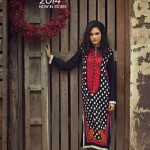 Origins - Ready to Wear Winter Dresses Collection 2014-15