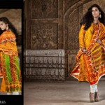 Rabea Pashmina Designer Embroidered Collection 4