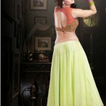 Readymade Bridal Lehengas Collection 2014-15 3