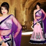 Brides Galleria Lovely Saree 2015 Design for Women (6)