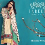 Pareesa new winter Dresses 2015 for women (1)