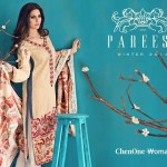 Pareesa new winter Dresses 2015 for women (4)