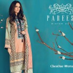 Pareesa new winter Dresses 2015 for women (6)