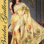 Indian hot Saree Design 2015 By Brides Gellria (1)