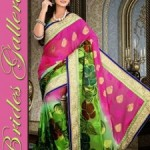 Indian hot Saree Design 2015 By Brides Gellria (5)