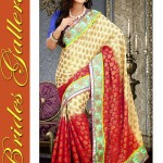 Latest Beautiful Saree Collection By Brides Gellria 2015 (2)