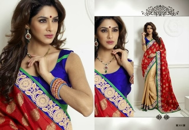 Latest Elegant Saree Designs 2015 (3)