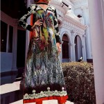Best Designer Summer Clothes Design for Indian And Pakistani Girls (6)